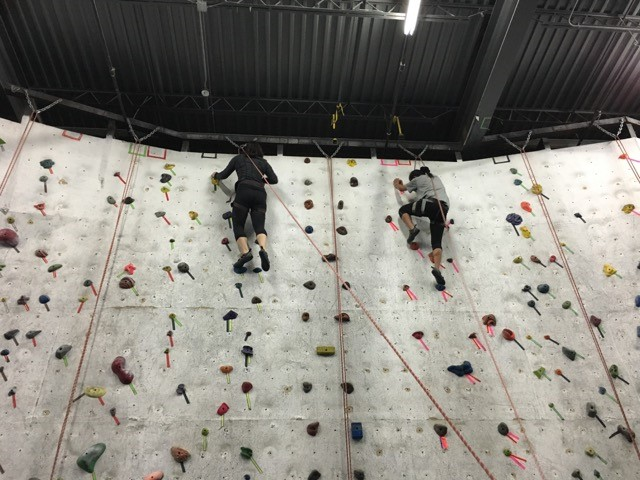 Two CAN Lab members reach the top of a rock wall
